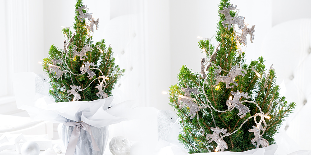 5 Surprising Ways You Can Make Christmas Easier With A Mini Tree