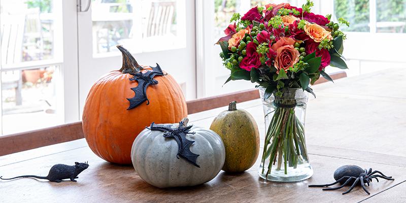 10 Spooky Halloween Flowers