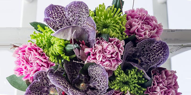 Top 12 Long-Lasting Flowers