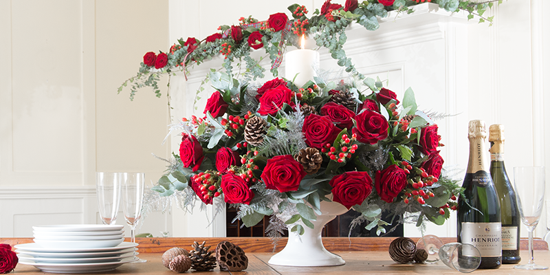 Top 6 Traditional Christmas Flowers Plants Appleyard London