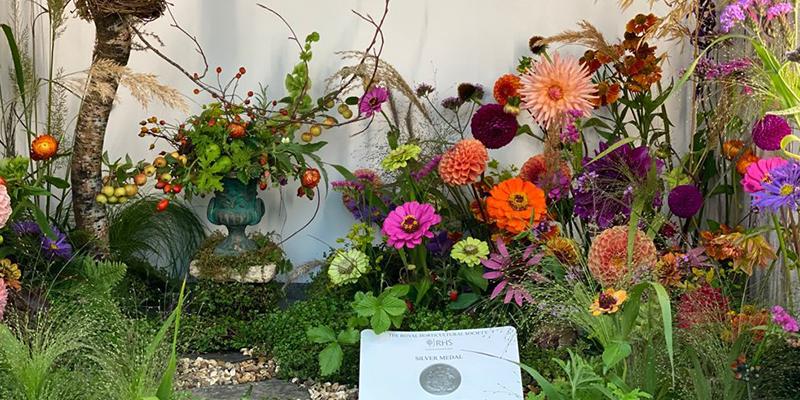Chelsea Flower Show 2021: Photos & Highlights