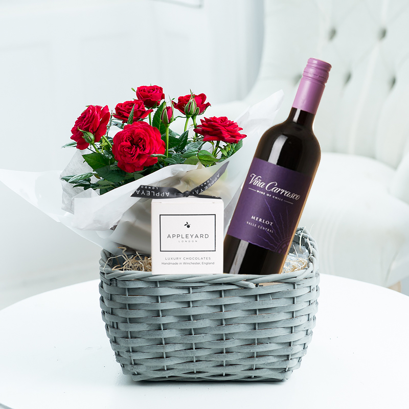 Red Wine Plant Hamper