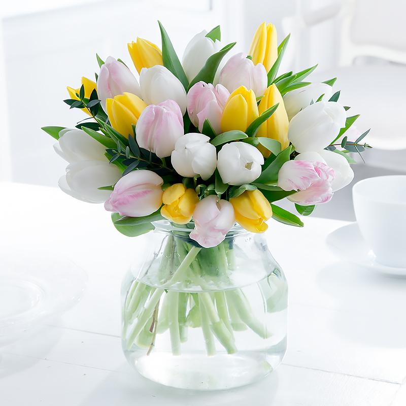 Winter Mixed Tulips