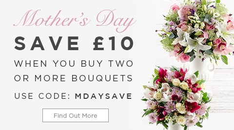 Mother's Day Save with 2 Bouquets