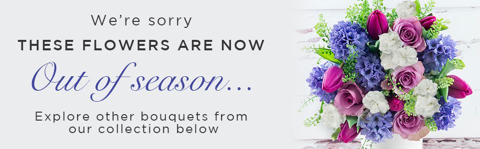Hyacinths Delivered