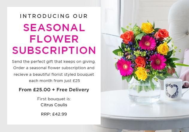 Seasonal Gift Subscription
