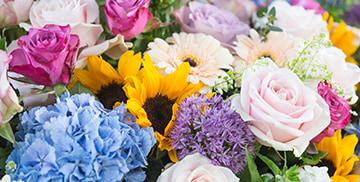 Flower Delivery   Order Flowers Online UK   Appleyard London